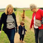Casper the alpaca walks behind some farm visitors