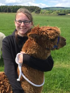 Iona and Jonty the alpaca